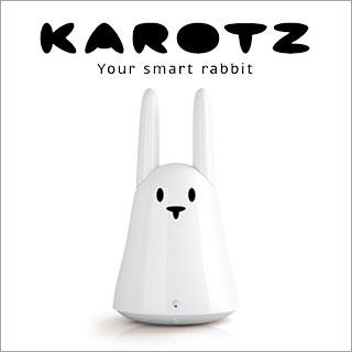 18-320x320-karotz